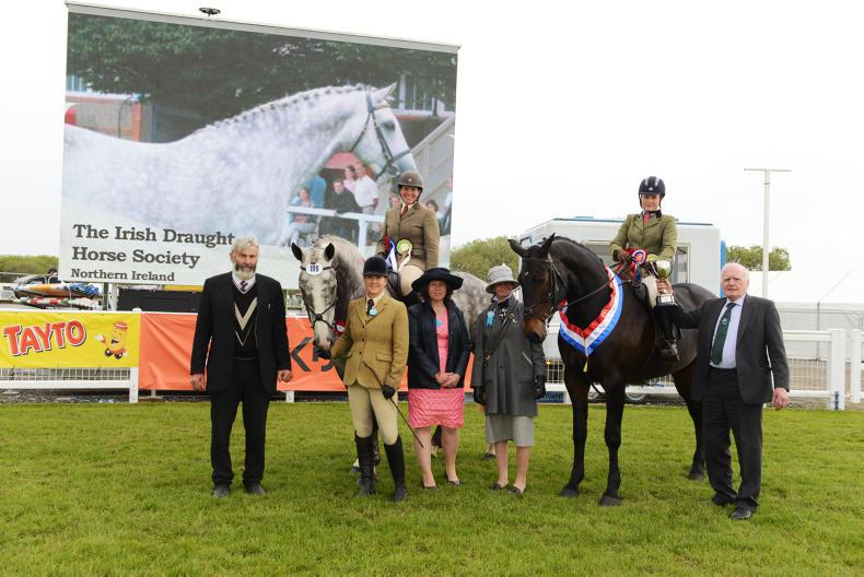 BALMORAL SHOW 2018:   Special victory for Teuton