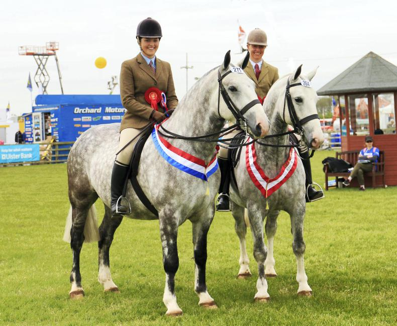 BALMORAL SHOW 2018:  Cromwell conquers all to win
