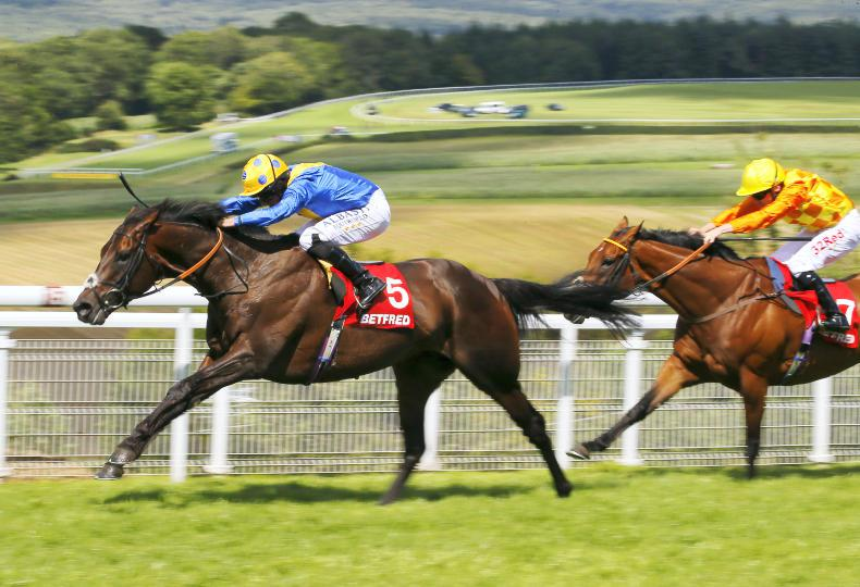 Poet's Word proves the class act in Brigadier Gerard Stakes