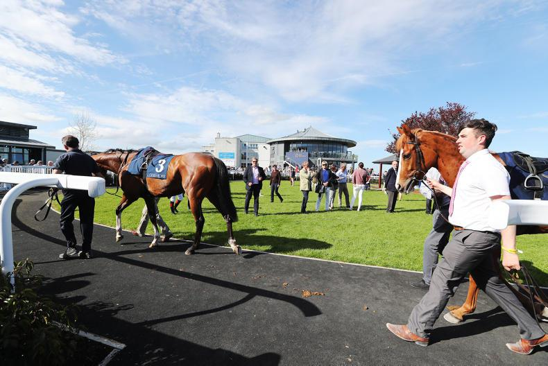 NEWS: Naas moves to prevent further race cancellations