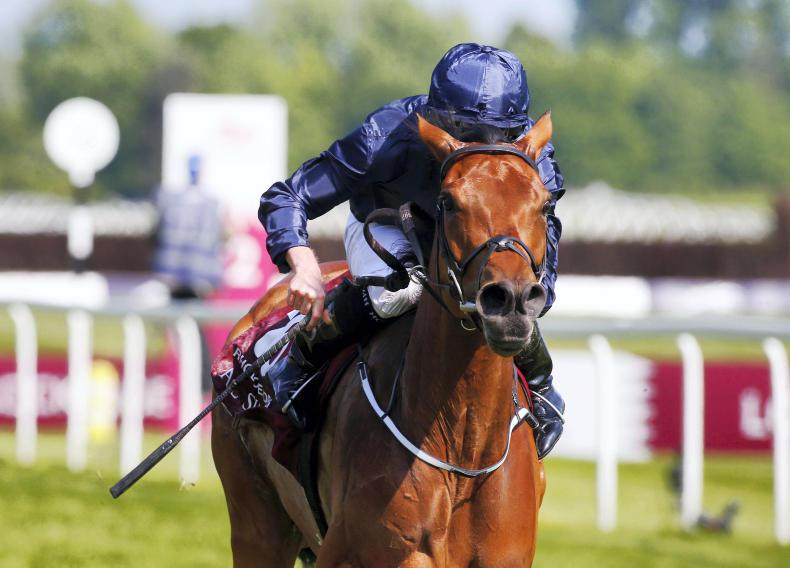 SIMON ROWLANDS: Will Rhododendron wilt at Ascot?