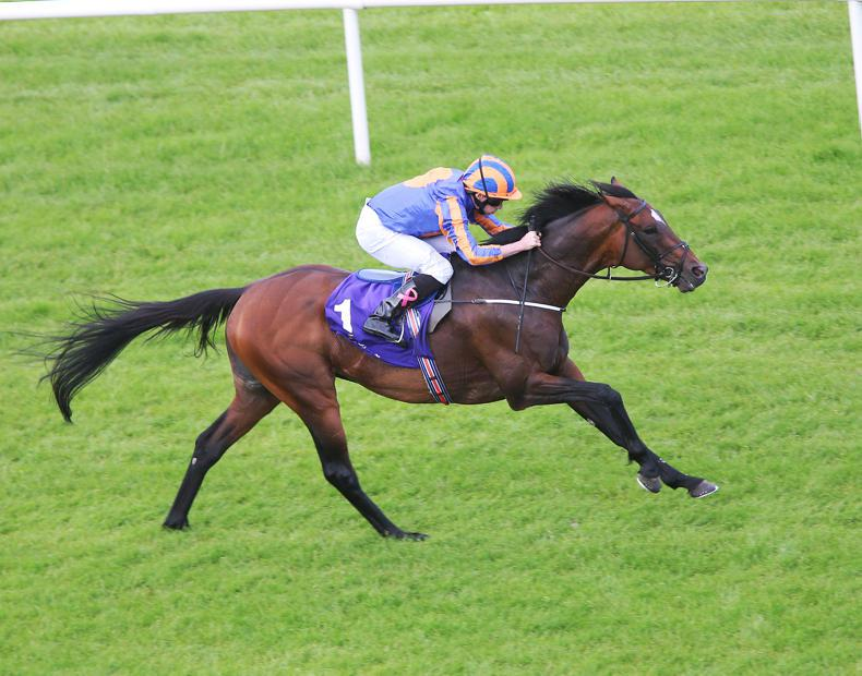 Order Of St George records third success in Saval Beg Stakes at Leopardstown
