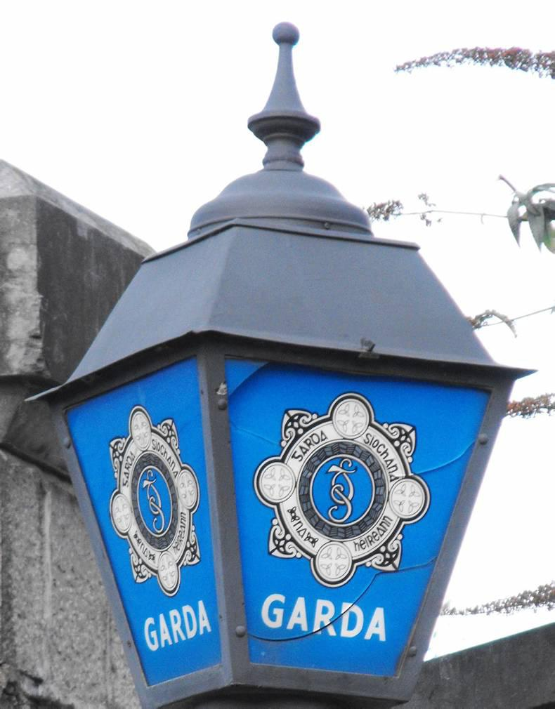 NEWS: Gardaí appeal over horse cruelty incident