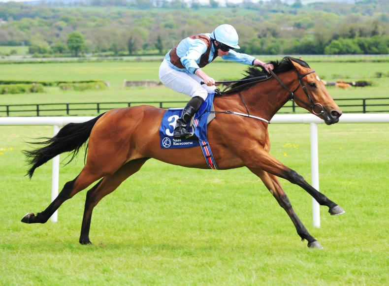 Merchant Navy all set for Ascot following striking Curragh bow