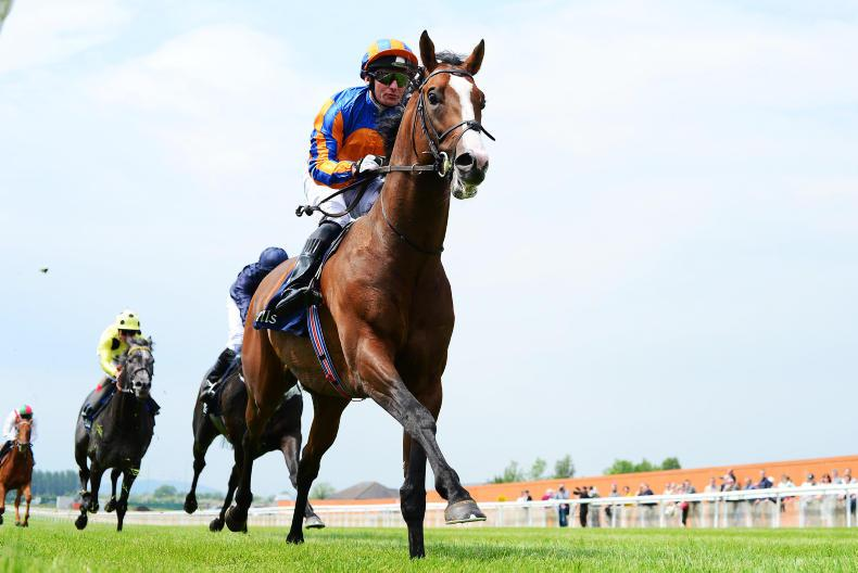 CURRAGH SUNDAY: Gold for tough Bomber