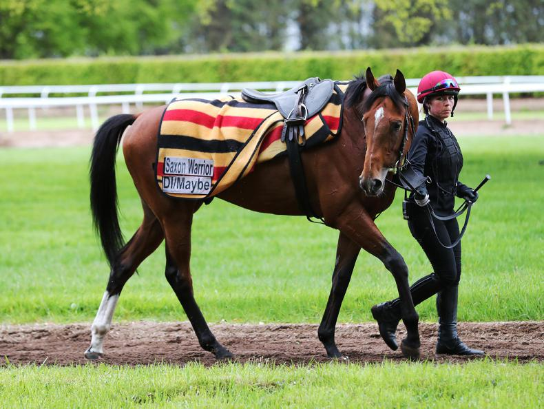 Saxon Warrior set to start odds-on for Derby