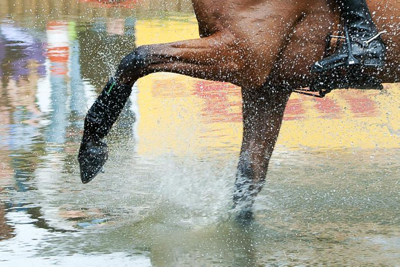 EVENTING: Dublin stalwart is quick off the mark
