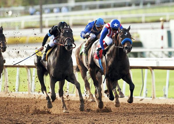 Is Shared Belief a new champion?