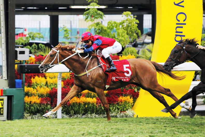 HONG KONG: Sunday Sha Tin selections