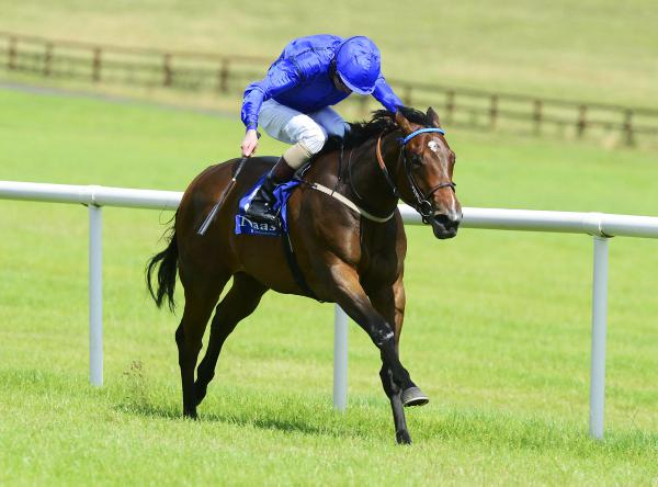 Lucida a potential star for Shamardal
