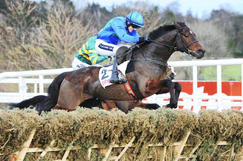 GOFFS LAND ROVER SALE: Siblings to Cheltenham stars