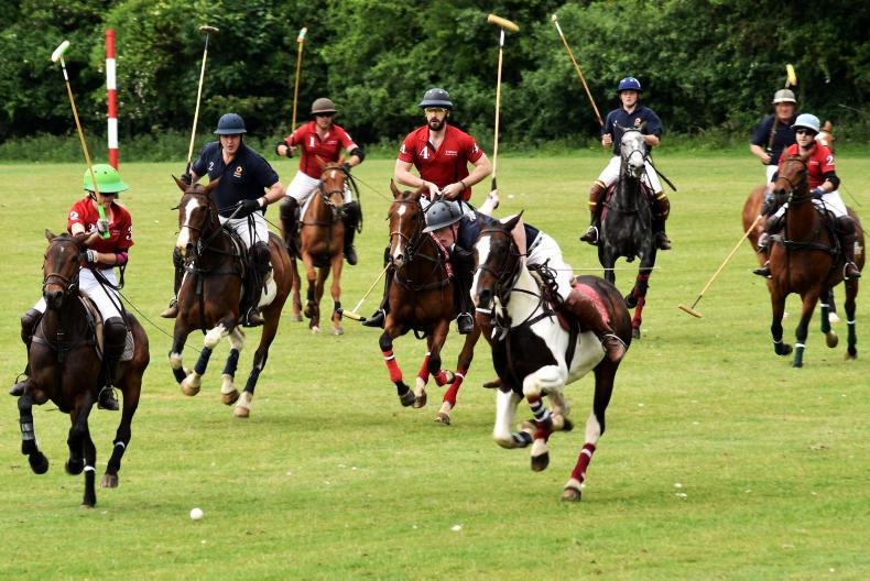 POLO:   Tyrone clicks together in Bunclody final