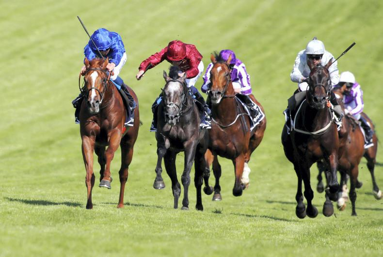 Masar and Saxon Warrior set for Irish Derby rematch