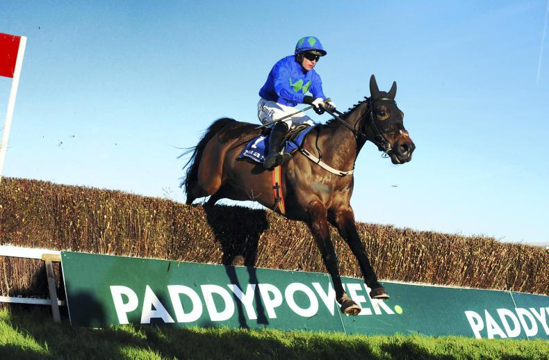 FRENCH PREVIEW: Asthuria to fly home for the Closutton team