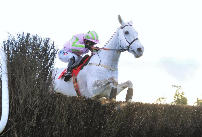 VIDEO: Auteuil graded wins for Willie Mullins and Ross O'Sullivan
