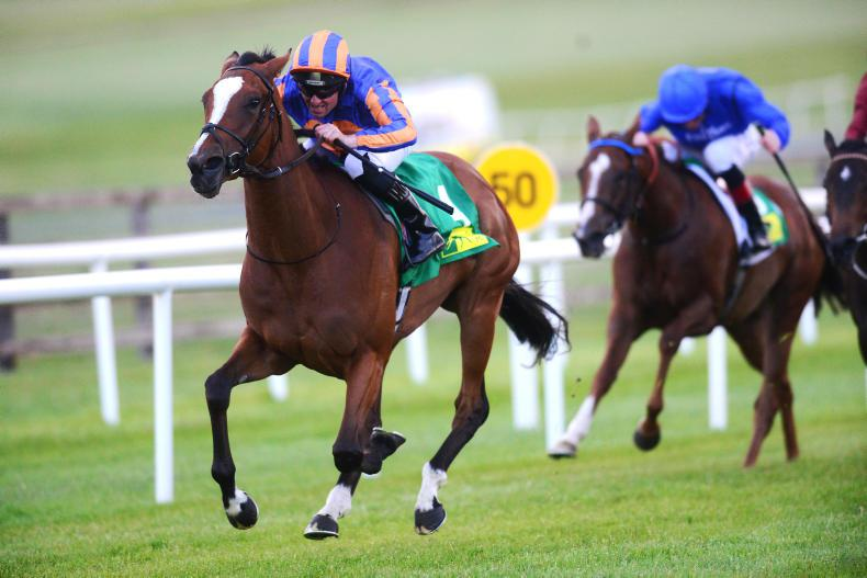 CURRAGH FRIDAY: Actress looks the part