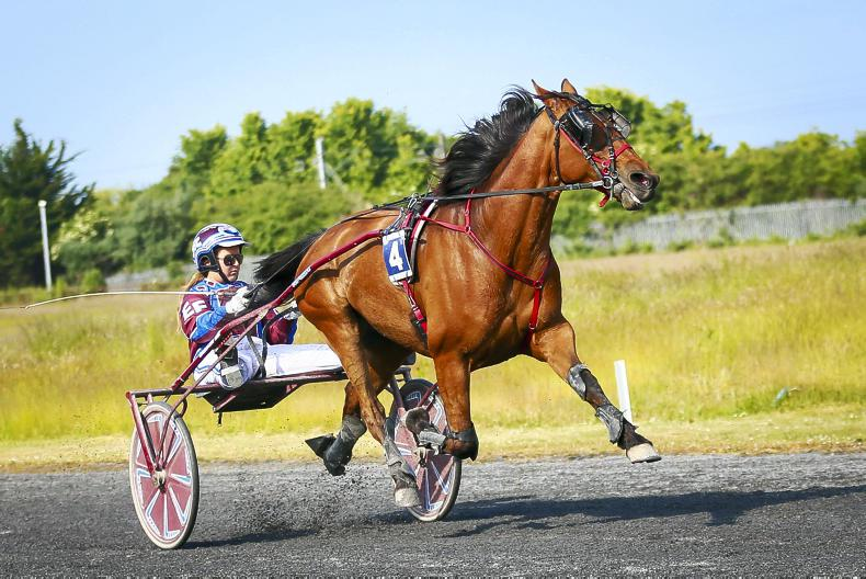 HARNESS RACING: Erin gains deserved breakthrough with Bonneval