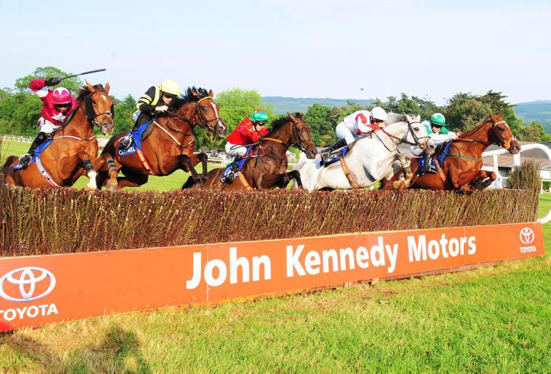 PICTURE DESK:  On track and in the sales ring