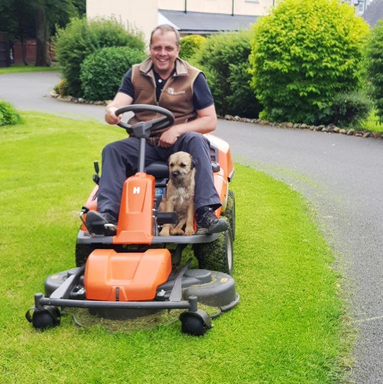 ME AND MY DOG: Ger Lyons and his canine assistants