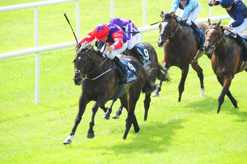 ROYAL ASCOT TIPS: Your free guide to the Tuesday card at Royal Ascot