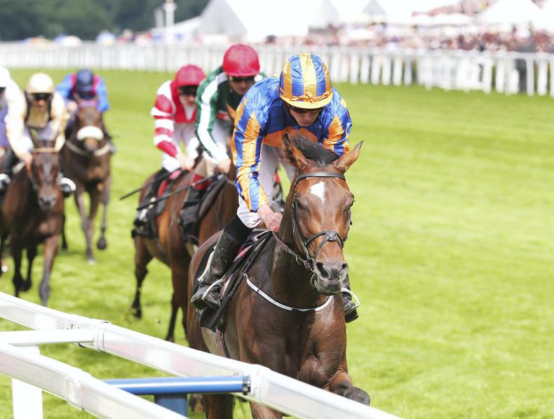Order Of St George and Stradivarius clash in Gold Cup at Royal Ascot