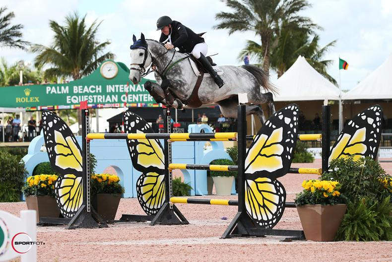 INTERNATIONAL: Four Irish feature in Spruce Meadows