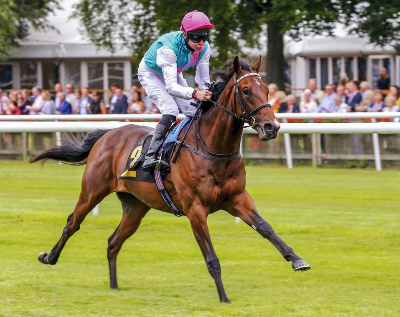 Classy Calyx rockets to Coventry Stakes success