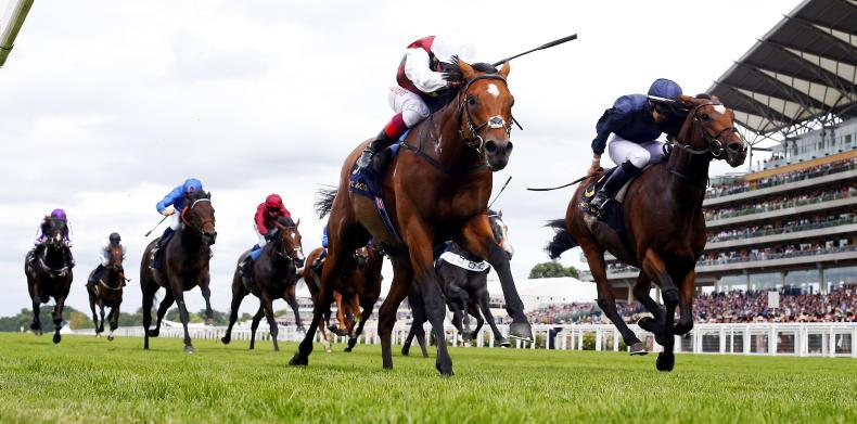 ROYAL ASCOT TUESDAY: Perfect record for Without Parole