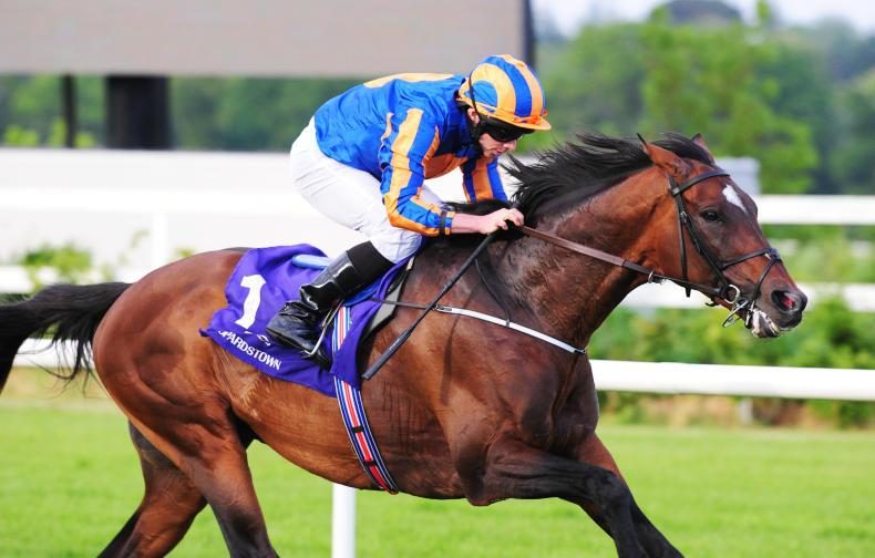 Order Of St George primed for Gold run at Royal Ascot