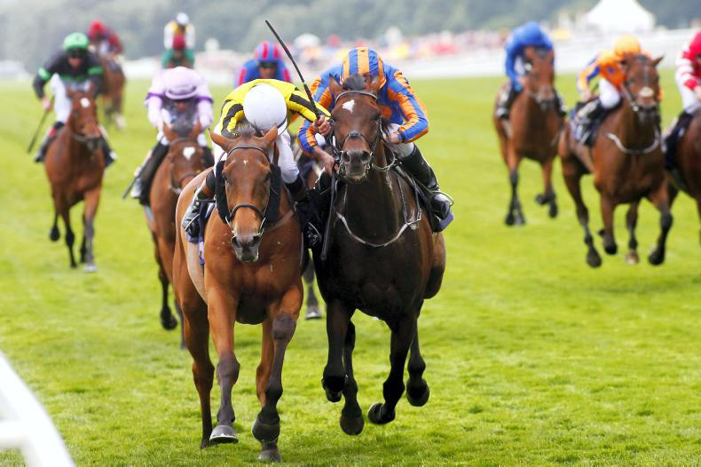 ROYAL ASCOT TIPS: Your free guide to the Thursday card at Royal Ascot