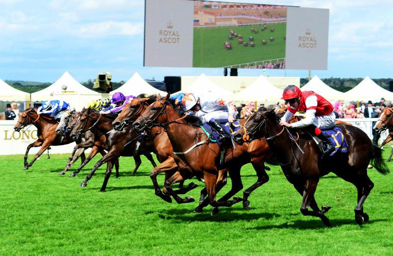 ROYAL ASCOT WEDNESDAY: Speedy Signora just holds on