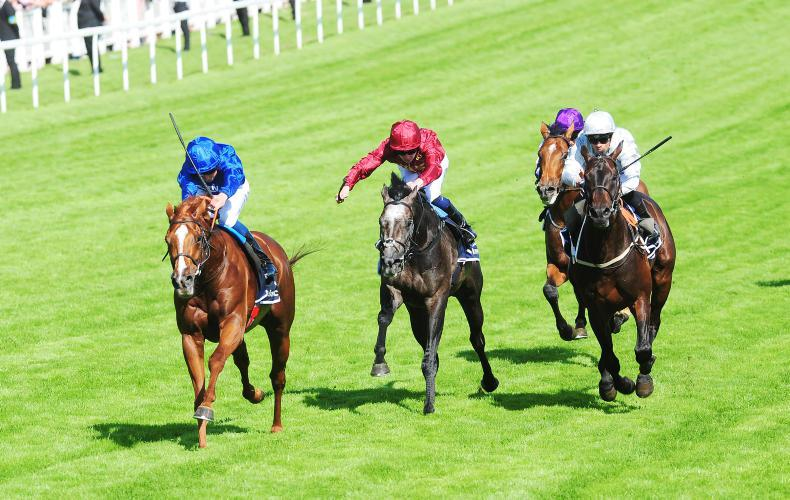 NEWS: Watering at the Curragh as glorious weather approaches