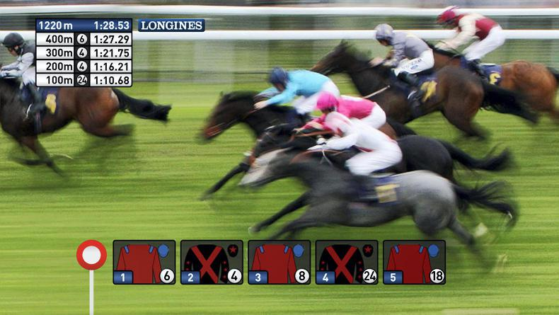 Ascot launches its own data-tracking system