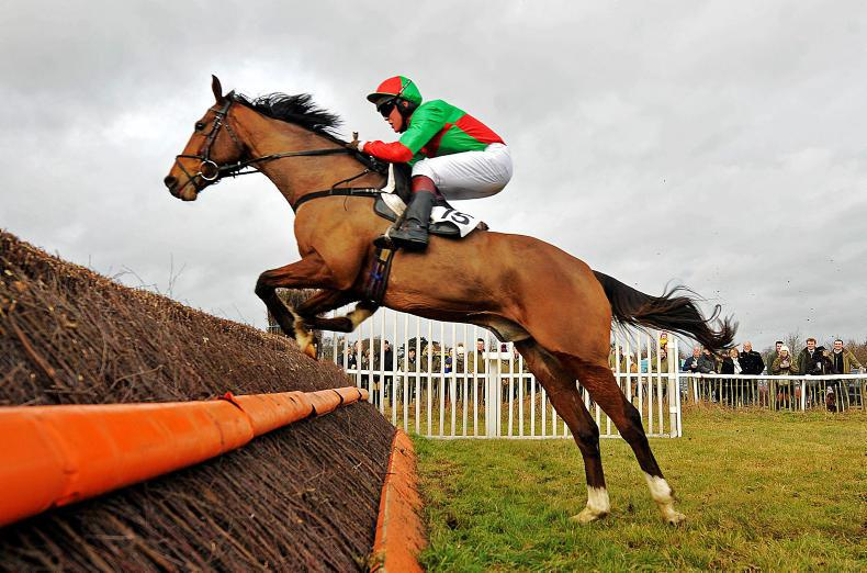 BRITISH POINT-TO-POINT: Season's finale falls to Irish-bred mare