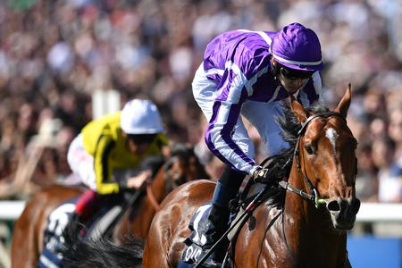 Saxon Warrior giving off right signs before Irish Derby