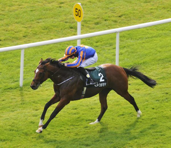 Stamina doubts for Gleneagles