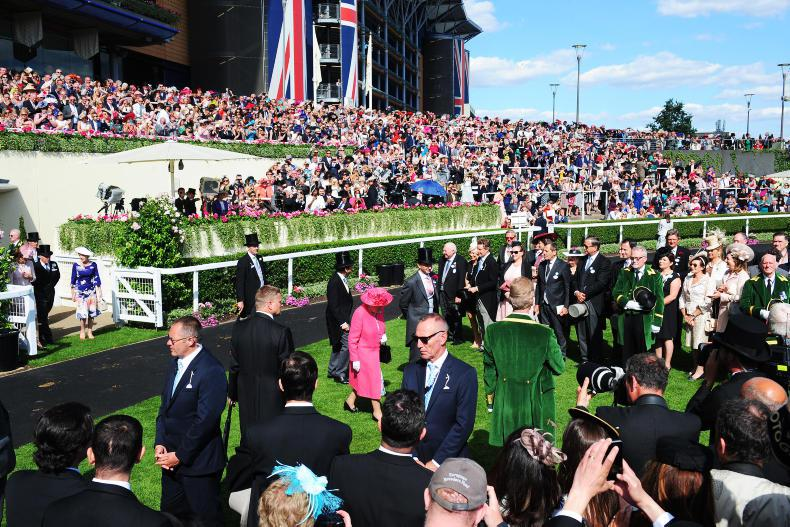 PAT HEALY: Grab a friend and head for Ascot!