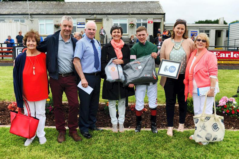 'Kestrel' swoops for syndicate success