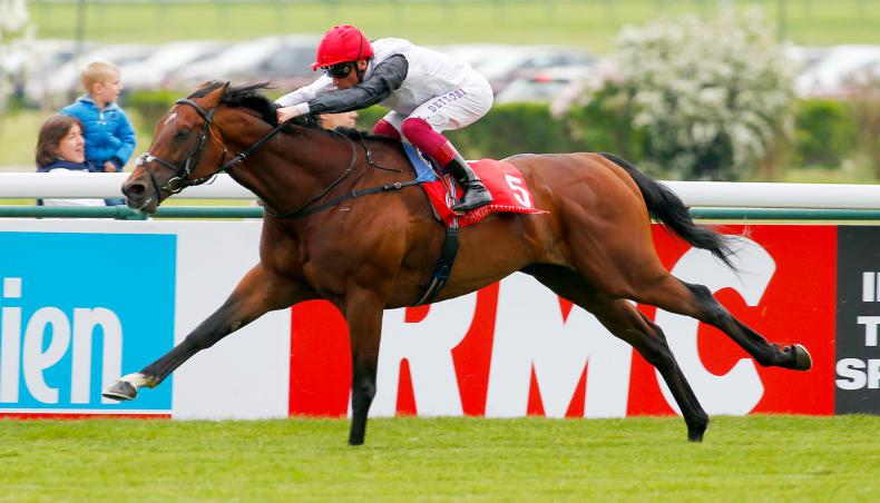 Connections in no rush to decide future plans for Cracksman