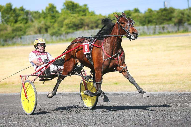HARNESS RACING: Robyn and Rhyds duel sets crowds alight