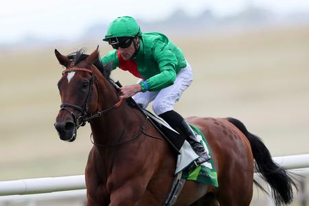 Wily Urban Fox too cunning for Curragh rivals