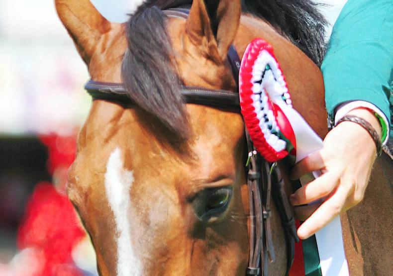 SHOW JUMPING: Final pony riders confirmed for RDS