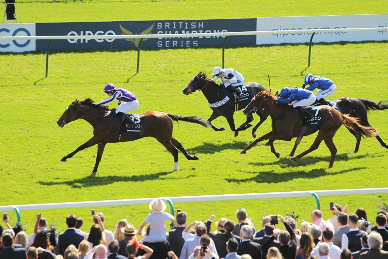 Tip Two Win could drop down in trip at Goodwood