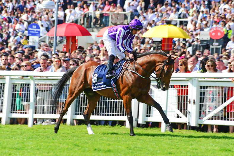Aidan O'Brien 'happy' with surprise Eclipse contender Saxon Warrior