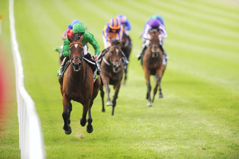 CURRAGH SUNDAY: Urban Fox finds another level