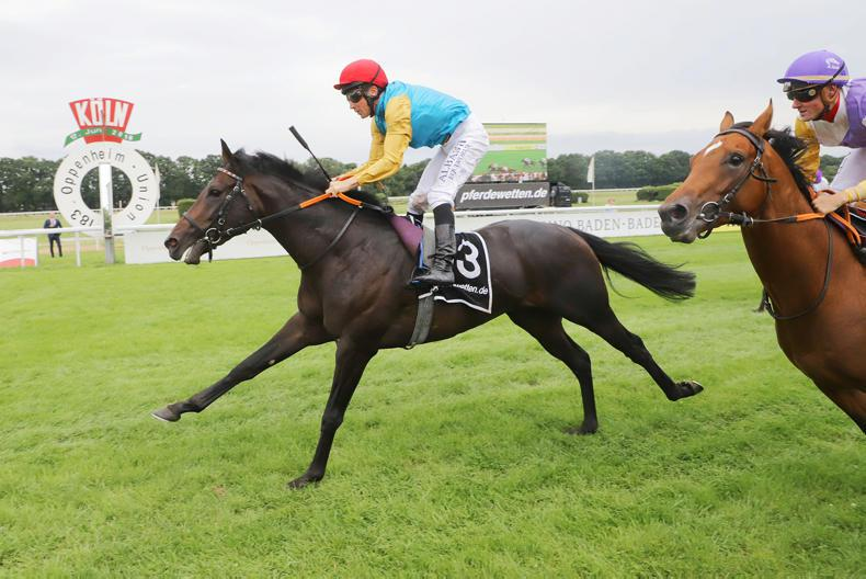 GERMAN DERBY PREVIEW: Royal Youmzain could have the edge