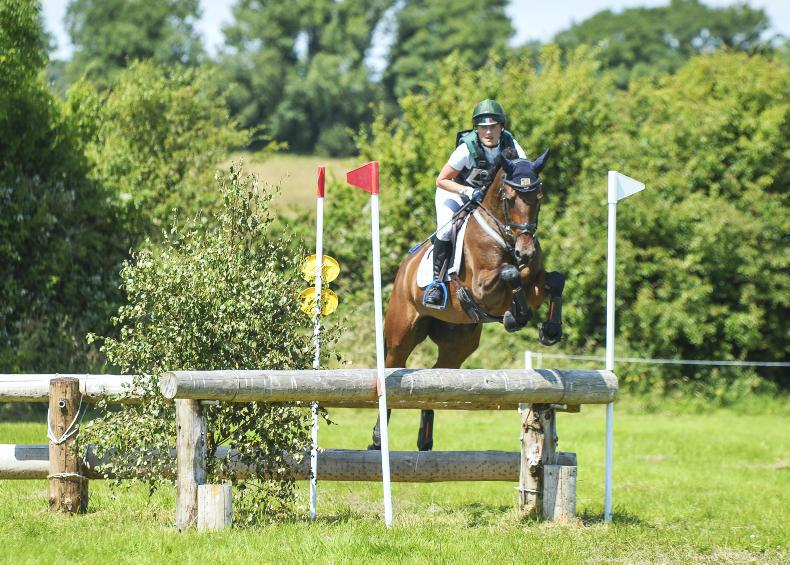 NEWS: Fell ensuring perfect ground at Ballindenisk