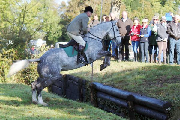 Strong demand for quality hunters at TIHA sale