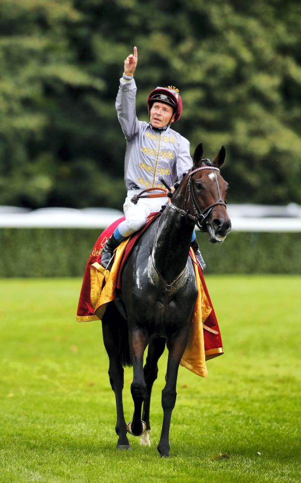 Treve from one of best families in studbook