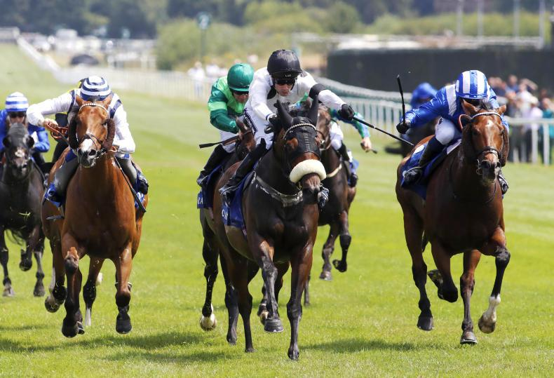 Nunthorpe Stakes on the horizon for Charge hero Judicial